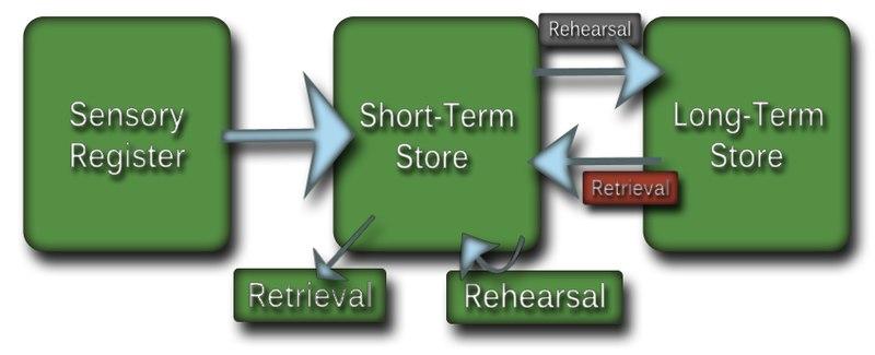 File:Modal model of memory.tif