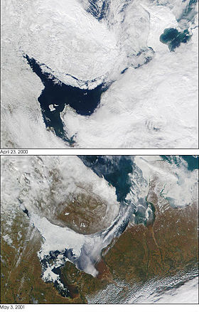 Modis white sea.jpg