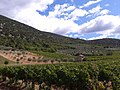 Mollans sur Ouveze - panoramio.jpg