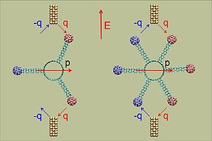 An electron-tunneling molecular motor, powered...
