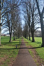 File:Monmouth Chippenham Park - Tree lined path.JPG