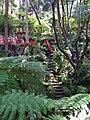 Monte Palace Tropical Garden Japanese Garden (4642480745).jpg