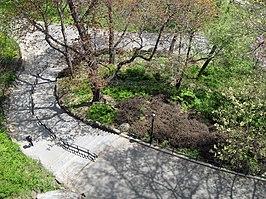 Morningside Park (New York City)