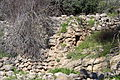 Mount Eitan IMG 2682.JPG