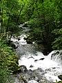 Mountain stream (6045503624).jpg
