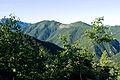 Mt.Maeogochidake 02.jpg