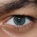 Muhammad Abdullah Butt Eye.jpg