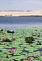 Muine Lake.jpg