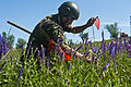 Multinational forces participate in Regional Cooperation 12 Exercise -01.JPG