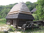 Museum of Folk Architecture and Ethnography in Pyrohiv - Pylypets house with watermill - 2420.jpg