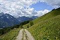 Mussen-Wanderweg Wiesen 16072014 434.jpg