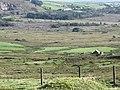 Mynydd-du-Commin north west of Rosebush, Pembrokeshire - geograph.org.uk - 2093746.jpg