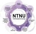 NTNU Toppundervisning.jpg