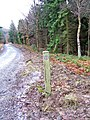 National Cycleway Network Marker Post in Wyre Forest - geograph.org.uk - 654324.jpg