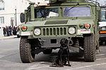 National Guardsmen support 57th Presidential Inauguration 130121-Z-QU230-122.jpg