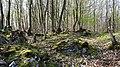 Naturschutz- und Natura 2000-Gebiet Trimberg bei Reichensachsen (2).jpg