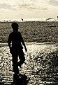 Navarre Beach Silhouette.jpg