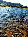 Nesamovyte Lake, Carpathians.JPG