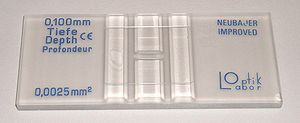 Microscope slide - A Neubauer slide for cell counting.