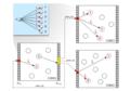 Neuron-to-neuron mesh routing model.png