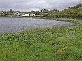 North shore of Lough Nacarriga - geograph.org.uk - 1308323.jpg