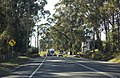 Northbound on Henry Lawson Drive in Georges Hall.jpg