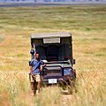 Northern Serengeti Safari.jpg