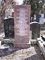 Novodevicij Cemetery Cechov family.JPG