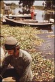 ON THE BANKS OF BAYOU GAUCHE. SIGN IN BACKGROUND ANNOUNCES FRESH CAUGHT CRABS FOR SALE - NARA - 544226.tif