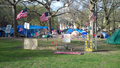 OccupyNewHavenPeaceGarden.png