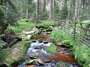 Oder (Harz) - Image: Oder oberhalb Oderteich