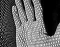 Office chair shadow (15021216101).jpg