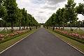 Oise-Aisne American Cemetery and Memorial 3.jpg