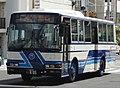 Okinawa Bus 0805.jpg