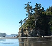 Olympic national park ruby beach.jpg