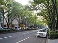 Omotesando - panoramio - kcomiida (6).jpg