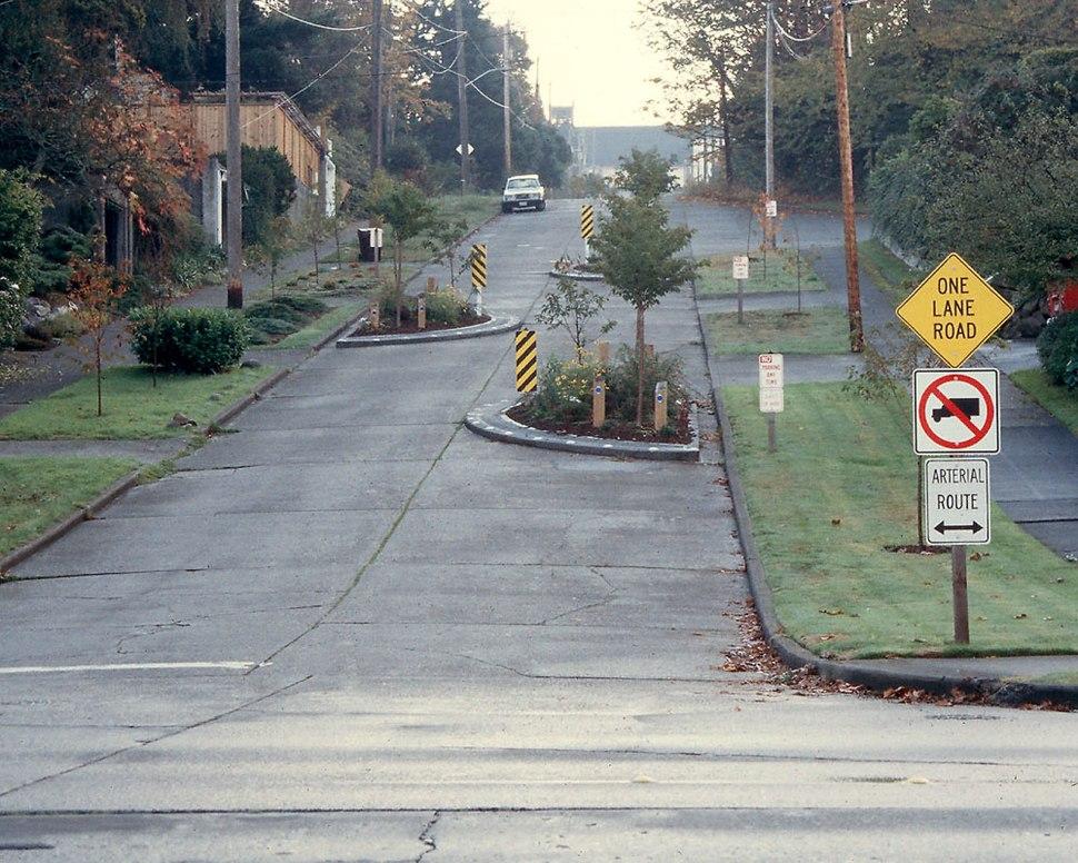 One-lane chicane 1