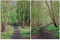 Otley Railway Footpath.jpg