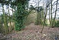 Overgrown track leading off the A21 - geograph.org.uk - 1743977.jpg