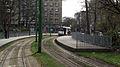 PCC's in stadspark I.jpg