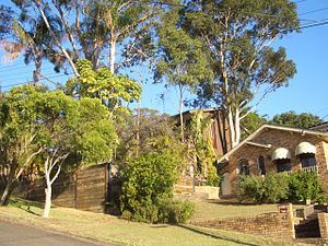 Padstow Heights - Henry Kendall Avenue, Padstow Heights