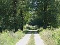 Pagny-le-Château 2011 08 20 09.jpg