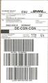 Paketaufkleber DHL Economy Select - Großbritannien-Deutschland 2016.png