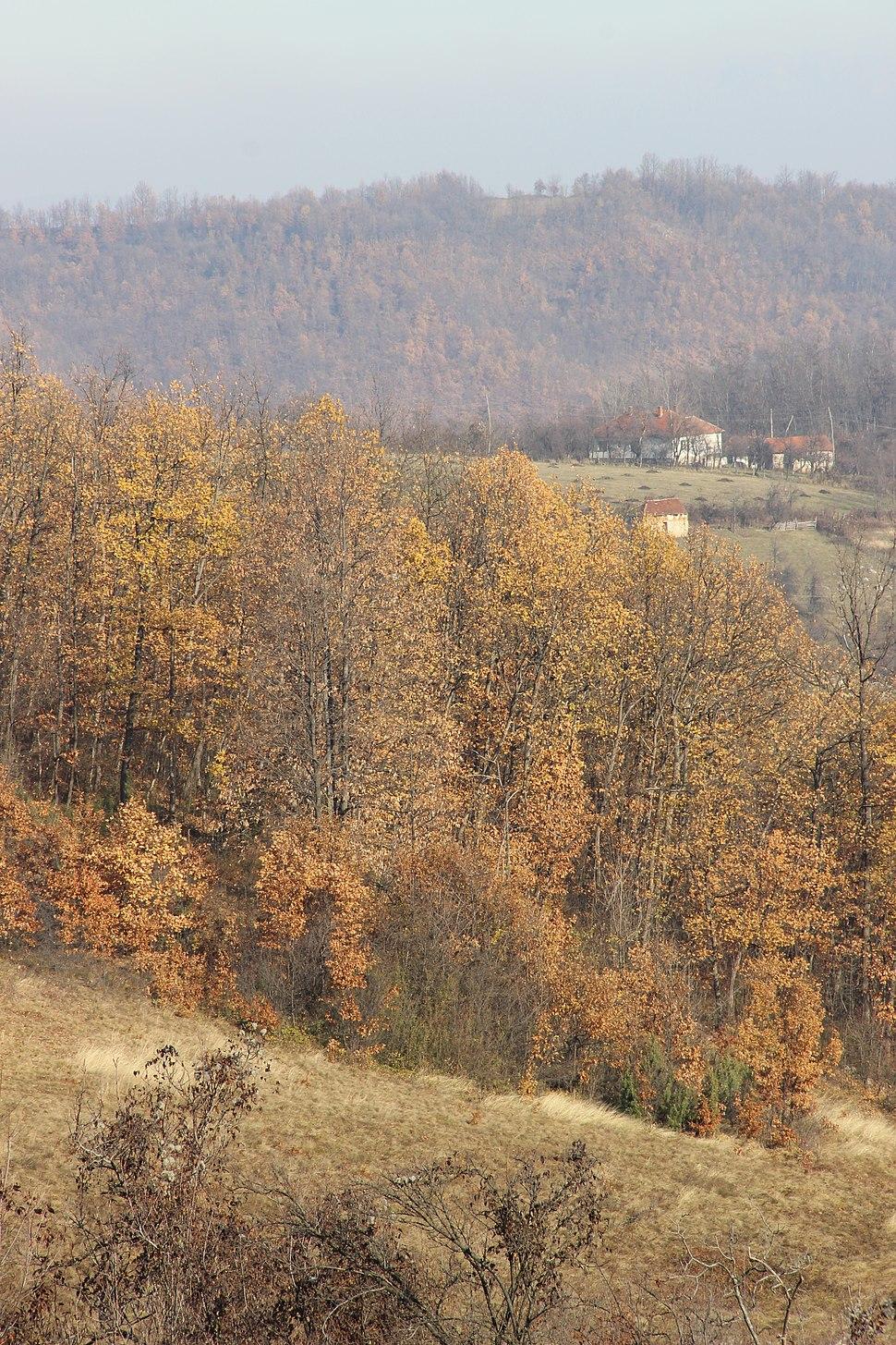 Paklje - opština Valjevo - zapadna Srbija - panorama 14