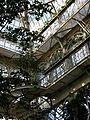 Palm house (Schönbrunn) 20080210 195-.jpg