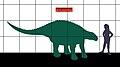 Panoplosaurus 0473.JPG