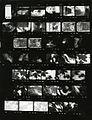 Paolo Monti - Servizio fotografico (Vogogna, 1982) - BEIC 6335277.jpg
