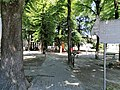 Parco Regina Margherita - Vigevano.jpg