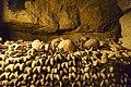 Paris catacombs (33821494524).jpg
