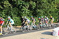 Passage du Tour de France 2013 à Saint-Rémy-lès-Chevreuse 30.jpg